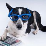 Randall Hancock's Under-Utilized Pet Tax Deductions